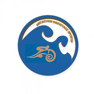 logo actuel SSSBA sauvetage